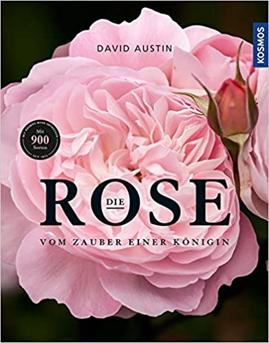 Cover Die Rose
