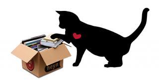 Katze rechts Karton