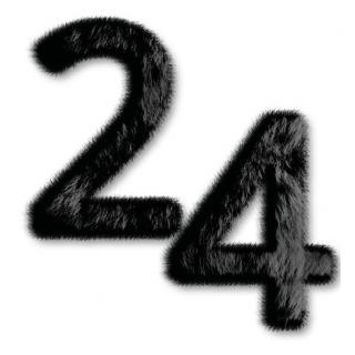 Service Bild24